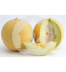 Melón amarillo Galia