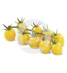 Tomate Cherry Amarillo